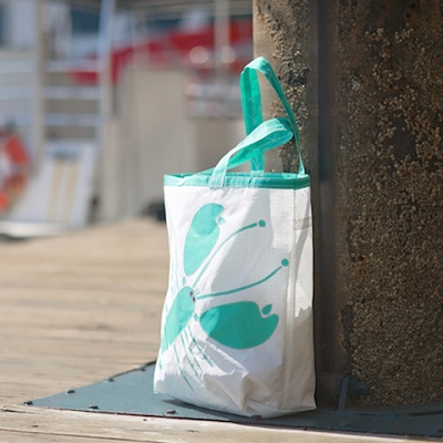 Teal Lobster Sail Bag