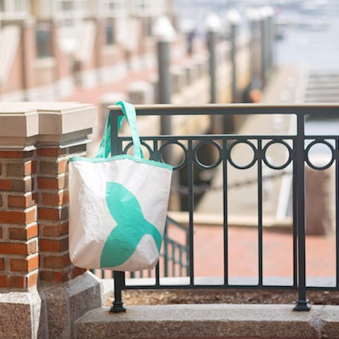 Teal Whale Tail Sail Bag - The Weekender