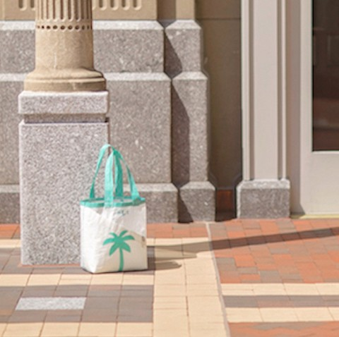 Teal Palm Tree Sail Bag -Everyday Tote